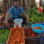 Supporting a Decade of Action on Nutrition