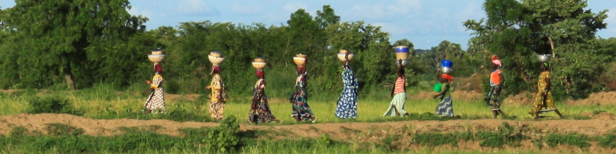 women rice farmers in benin