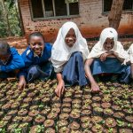 IFPRI-FAO Global Event Flash Update (September 10, 2018)