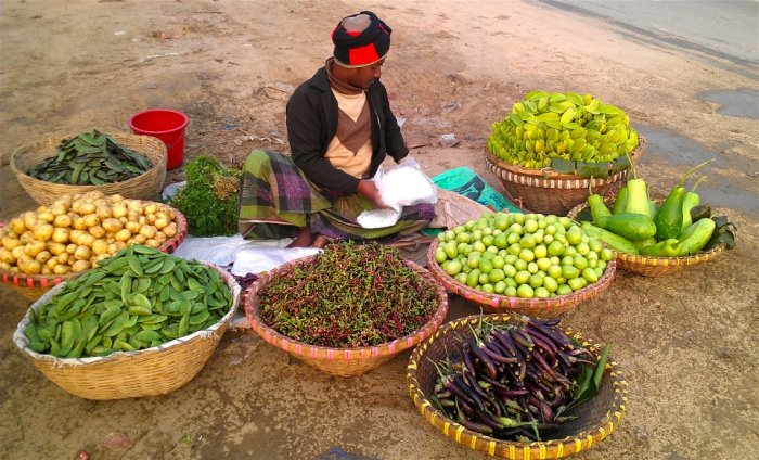 WEBINAR: The Nexus Between Nutrition, Food Safety and Food Security